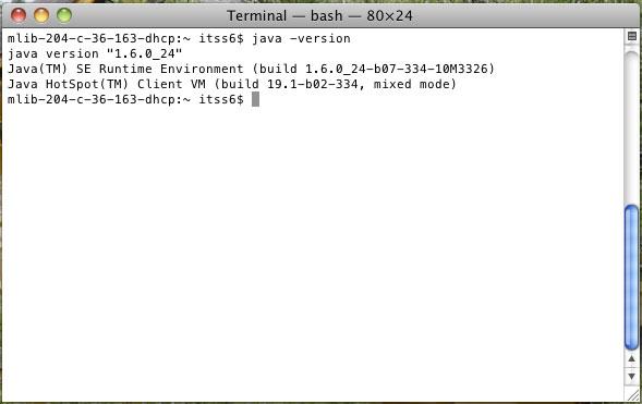 terminal bash